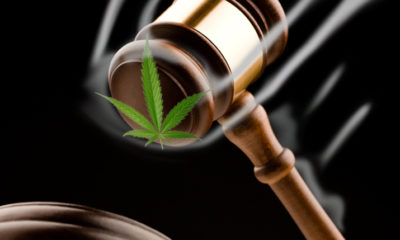 A pot leaf about to be smashed by a gavel.