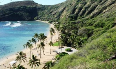 Beautiful palm beach is the buffer between clear blue waters of the Pacific and mountains of Hawaii, which could be the next state to legalize marijuana.