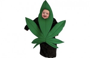 A baby in a pot leaf costume.