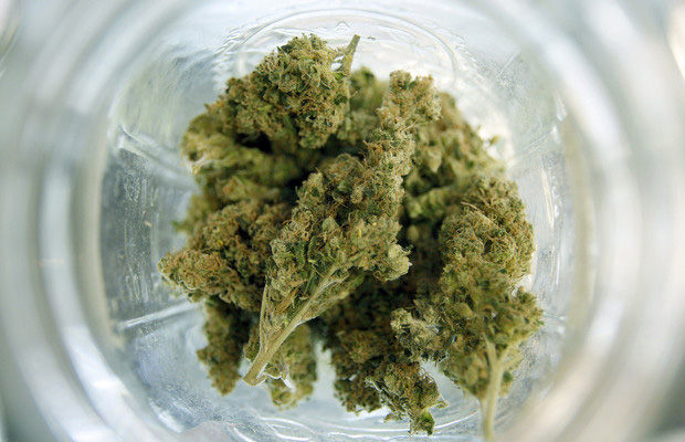 Recreational marijuana available in Colorado on New Year's Day   Cannabis Now Magazine