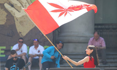 Woman Waves Canadian Flag with Red Pot Leaf in Middle
