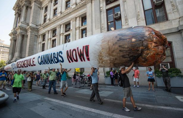 Giant Joint Cannabis Now Magazine