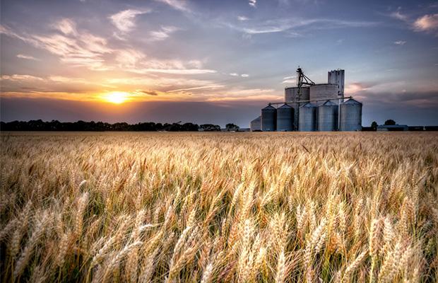 Colorado Pot Laws Affecting Kansas