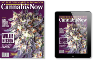 Purchase Cannabis Now Magazine subscription issue 24