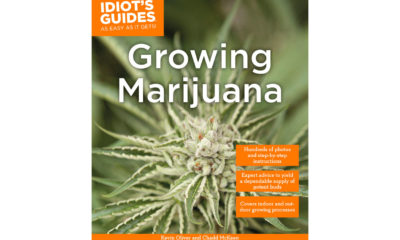 "The orange and green cover of Penguin Publishing House's book ""Idiot's Guides: Growing Marijuana."""