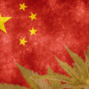 China has quietly filed for more than half of the 600 patents connected to Chinese hemp.