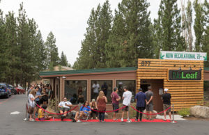 Lake Tahoe Cannabis Sales