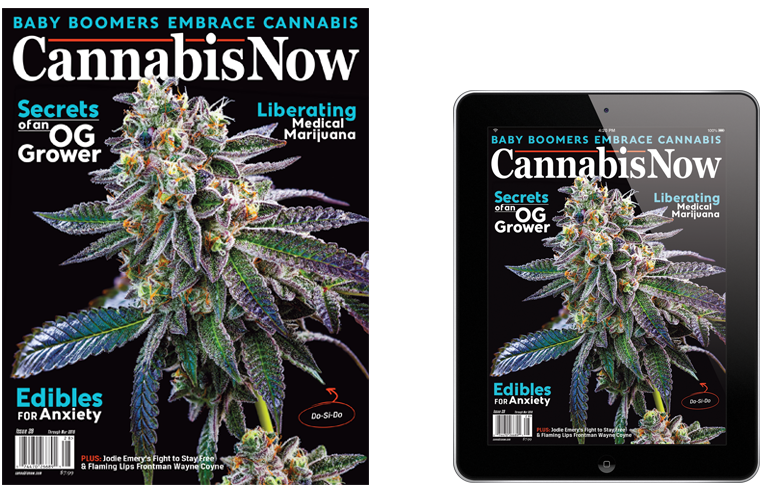 Purchase Print and Digital Editions of Cannabis Now Magazine
