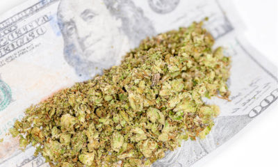Wholesale Prices Cannabis Now