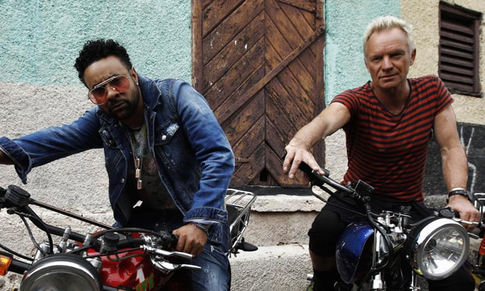 Sting and Shaggy marijuana Cannabis Now