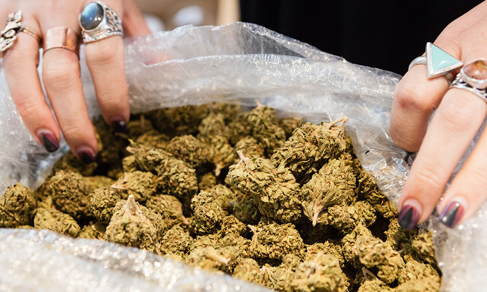 Why Is California Still Paying Black Market Prices for Legal Pot?
