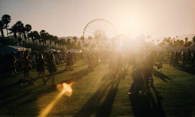 Judging Cannabis at Coachella