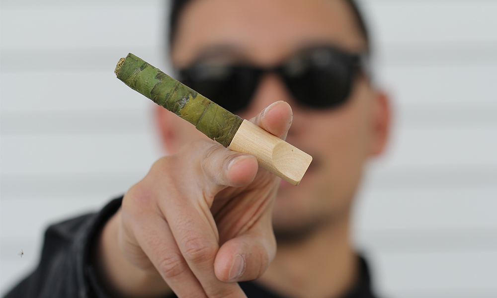 The Only Good Cigar is a Cannagar